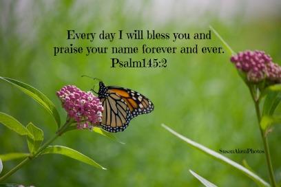 IMG_8115Psalm145