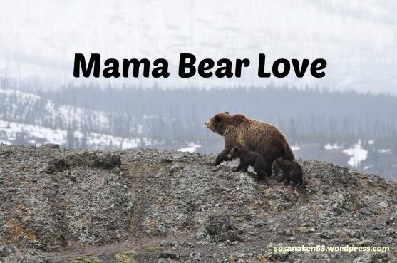 bears-1149459_1920.mamabear